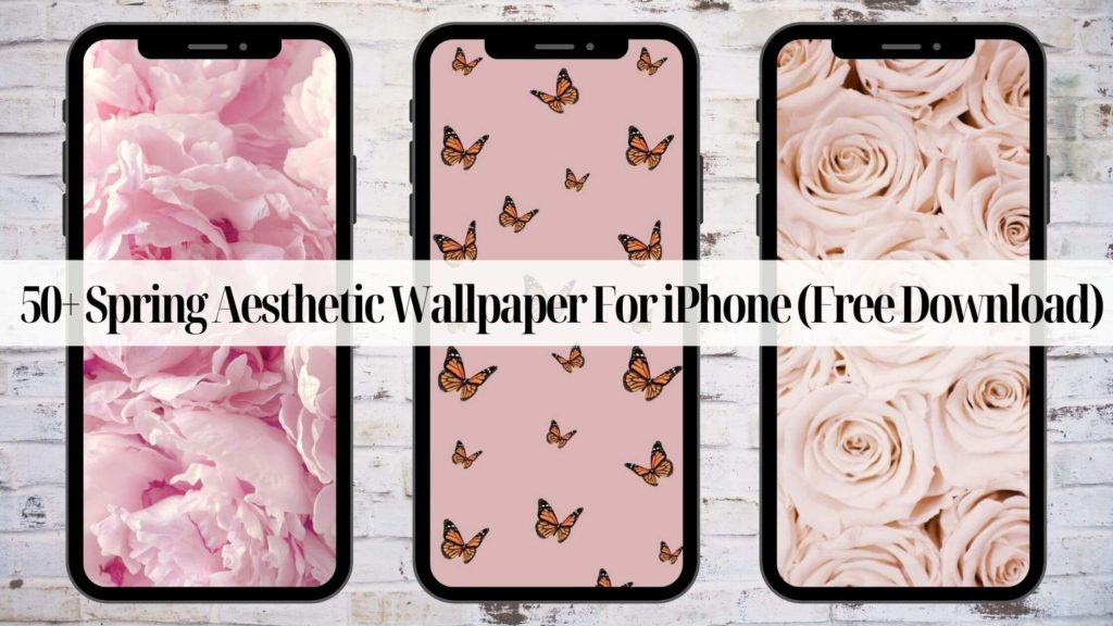 50 Spring Aesthetic Wallpaper For Iphone Free Download Kayla Everetts
